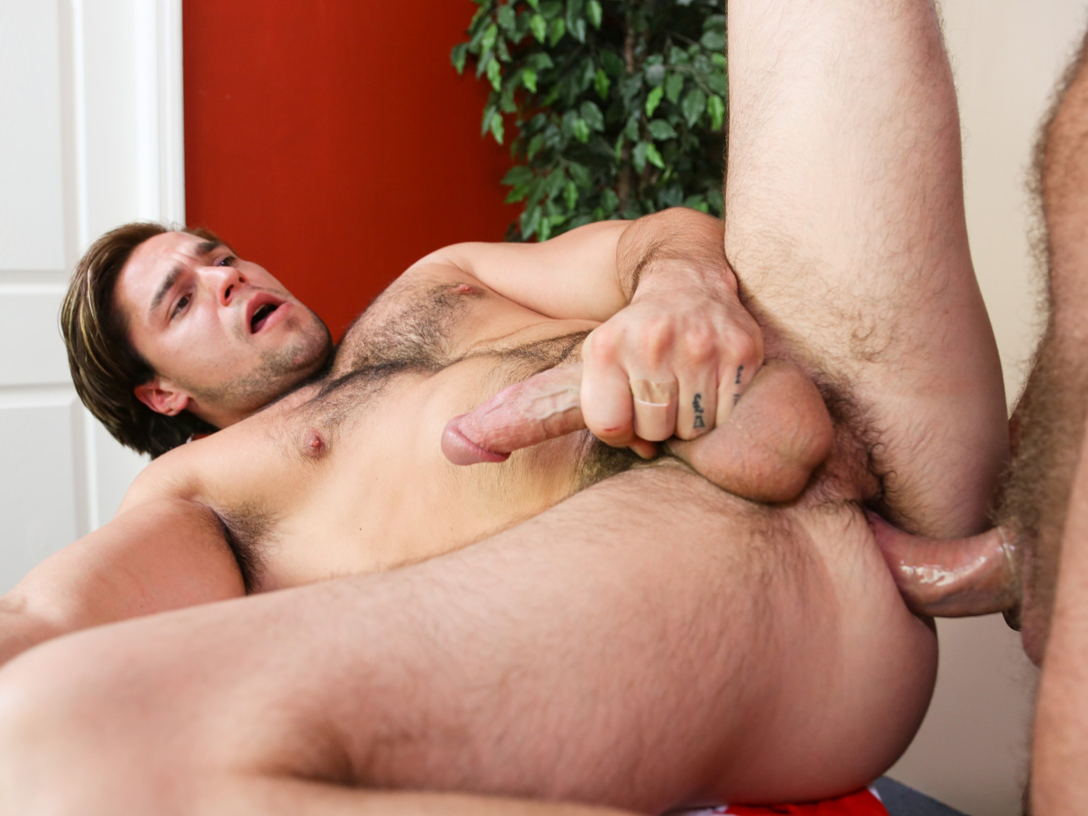 Free daddy gay male pics