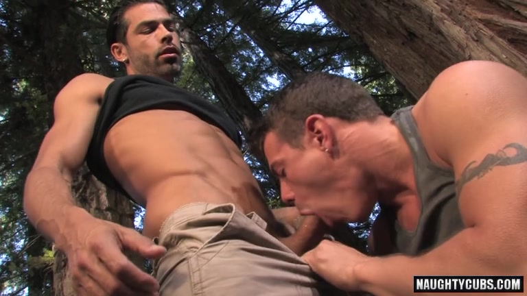 Outdoors gay big dick photo